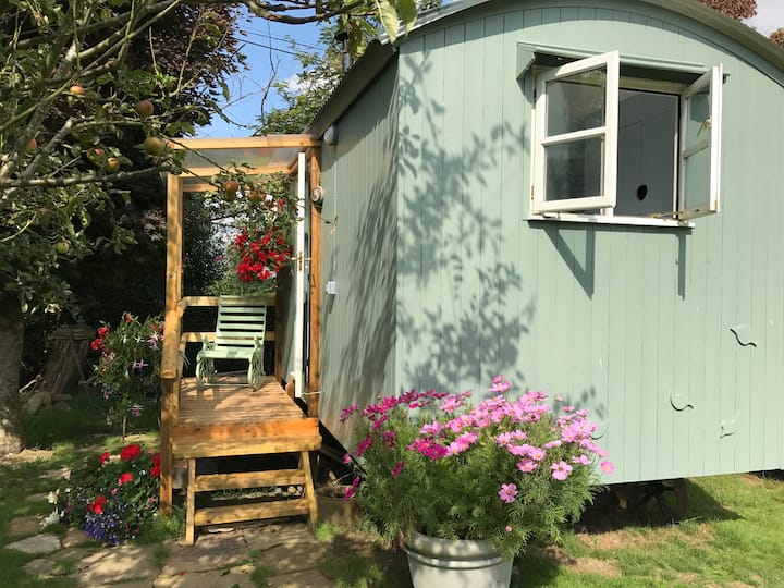 Shepherds Hut in Farm Garden - Glamping in Surrey