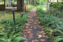 Follow the bridge from the cottage out to the pavilion. Gravel paths circle around, making a nice walk for meditation or with morning coffee. October 2018.