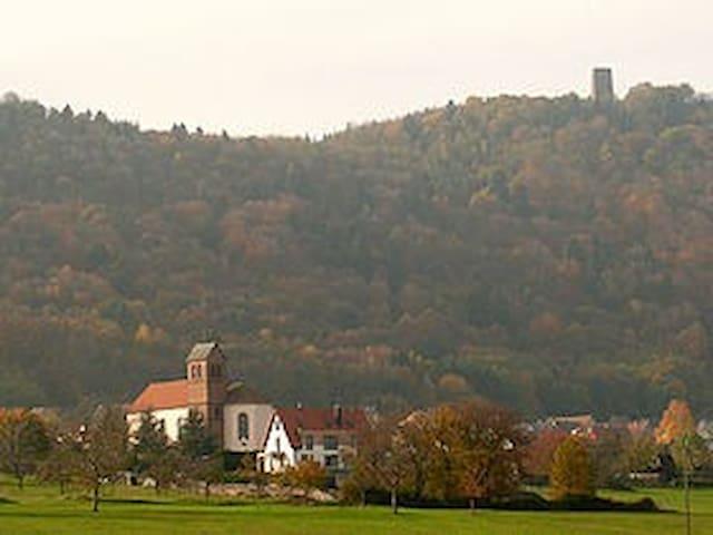 Maison cosy  idéale détente & découverte Alsace