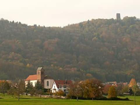 Hyggelige husdøre i Alsace
