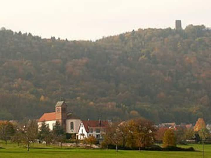 Maison cosy  Portes de l'Alsace