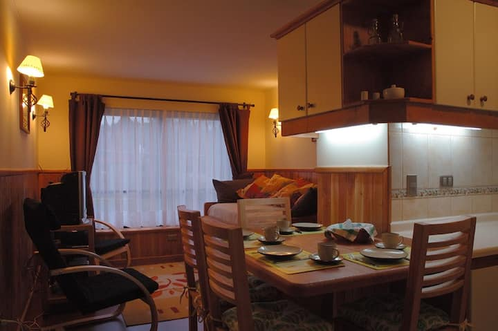 Comfortable Apartment in Pucón