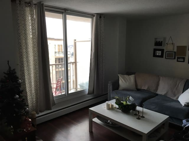 Downtown 1 Bedroom Condo !! - Edmonton - Apartment