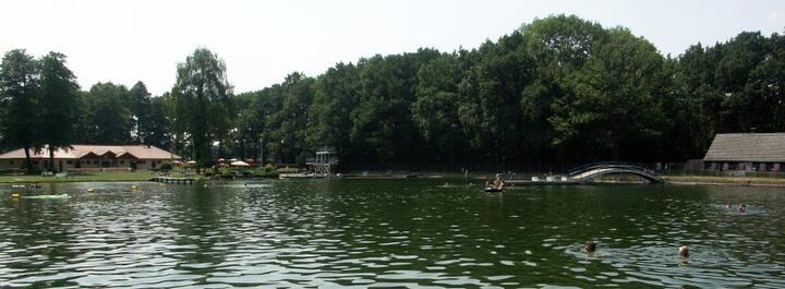 GESCHLOSSEN! Wald Bungalow direkt neben Naturbad
