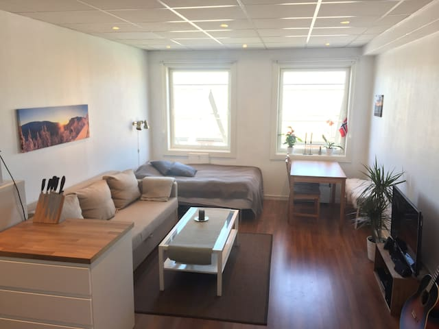 Studio apartment  in city centre with ocean view