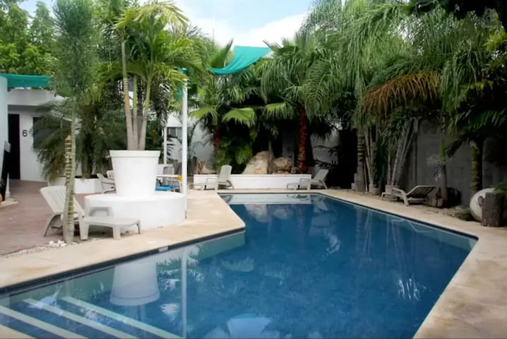 Great little studio - awesome pool, mayan greenery