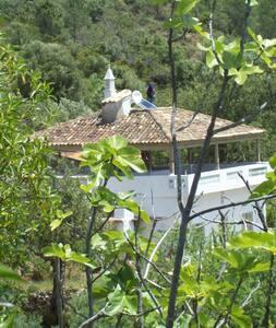 Chambre Pena-Zone Protégée Rocha da Pena - Pena