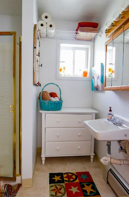Small, cute and practical bathroom facility