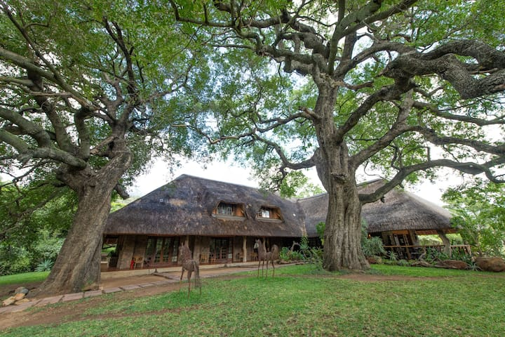 Blyde River Canyon Lodge - Luxury Room Twin