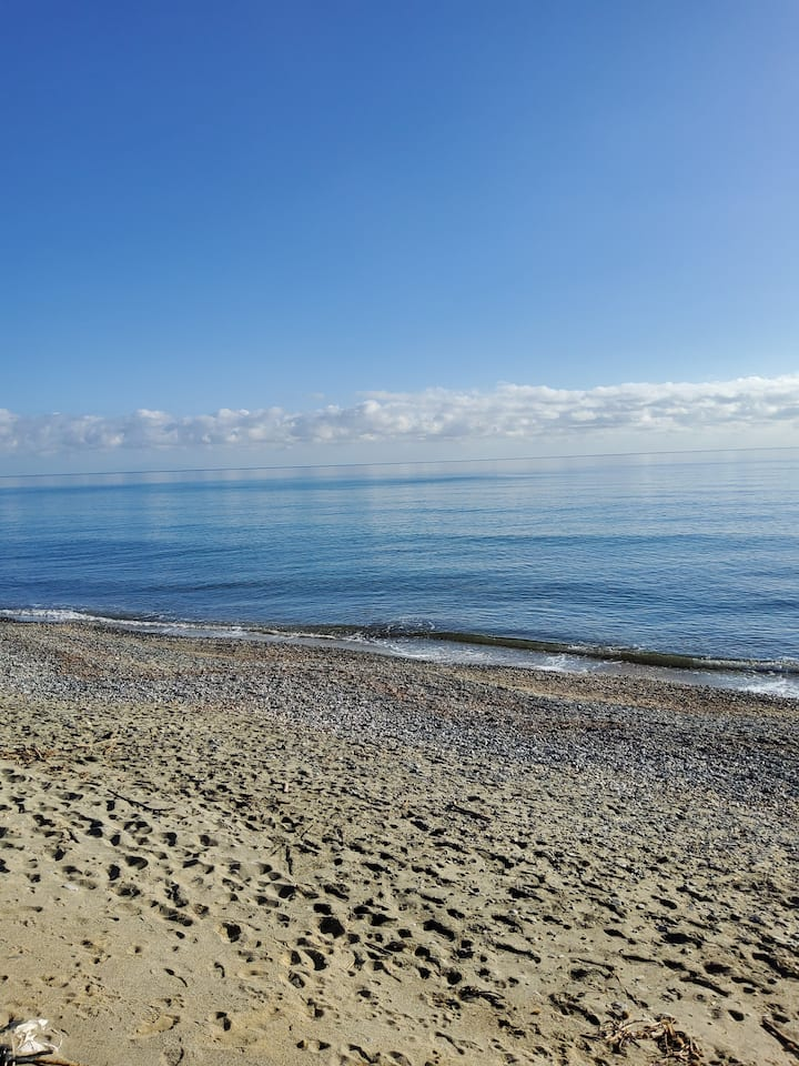 Superbe T2 tout confort vue mer moriani plage