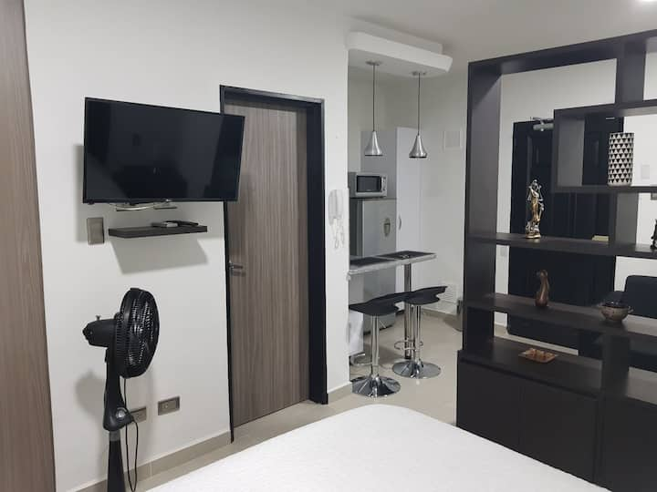 505 Moderno Aparta-Suite En Versalles Tipo Loft