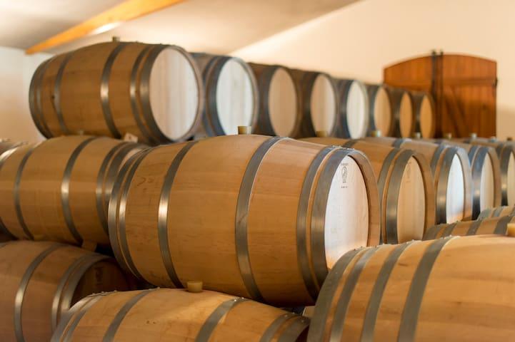 A deux pas du gîte, venez découvrir notre chateau et nos vins dans une ambiance chaleureuse et familiale