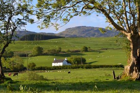 Snowdonia farmhouse cottage - Llanuwchllyn - Casa