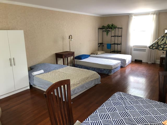 Large size  1 bedroom.south end heart of downtown4