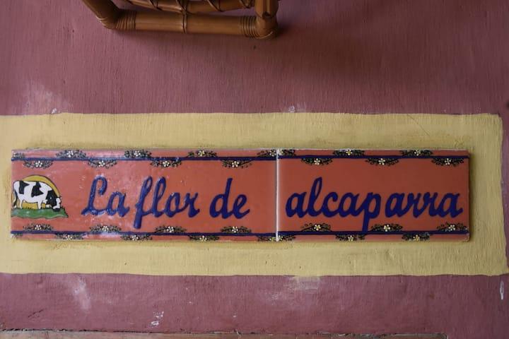 """Habitación FLOR DE ALCAPARROS Hotel """"El Recreo"""""""