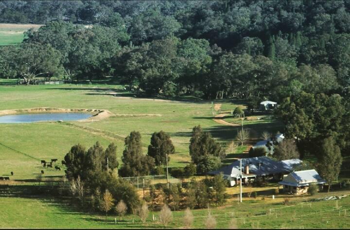 Gundooee Getaways Farm Stay, Tour + Wagyu meal
