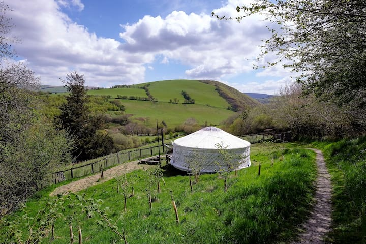 The Orange Yurt, Old Chapel Farm