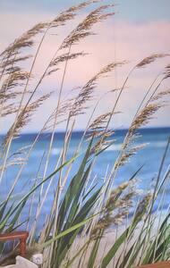 Beach and countryside. - Casa
