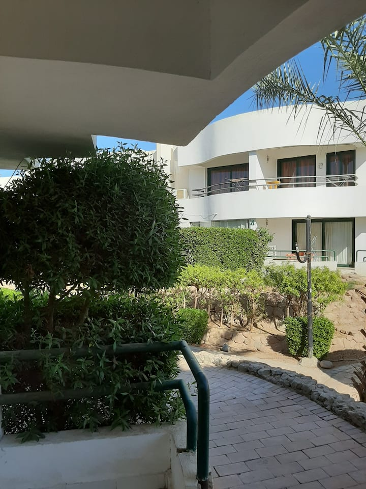 1-bedroom with terrace in Criss Resort (NaamaBay)