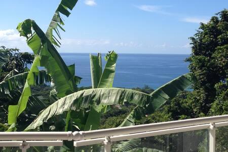 Villa Ripper 350m2, 360° vue  mer et montagne - Bas Vent