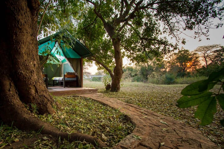 THORN TREE TENTED CHALET .1.