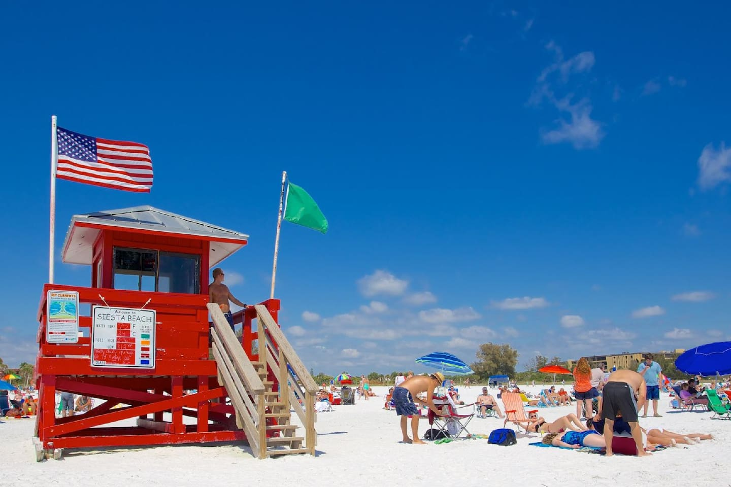 All this and just 5 mi away from Siesta Key Beach, the # 1 rated beaches in the entire USA!