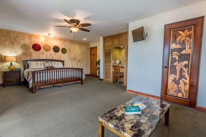 Hotel Buena Vista - Habitación Superior 1 King Bed