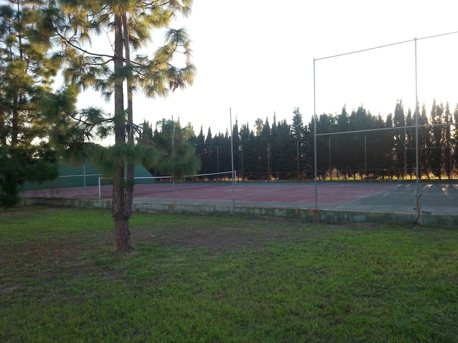 Tennis court (surface in excellent condition)