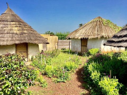 Camp Chez Doba
