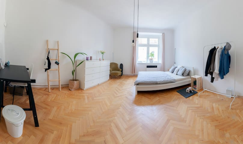 Cozy, Spacious and Bright Apartment