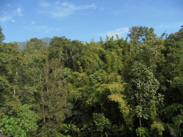 Selesa Hillhomes Carefree Homestay, Bukit Tinggi - Bentong - Apartment
