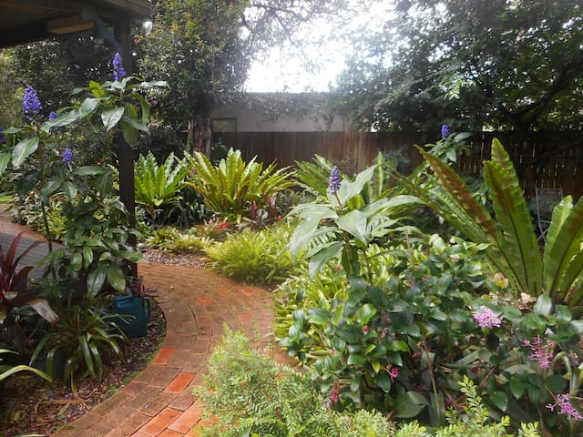 Rainforest Paradise , 2 rooms , walk to town