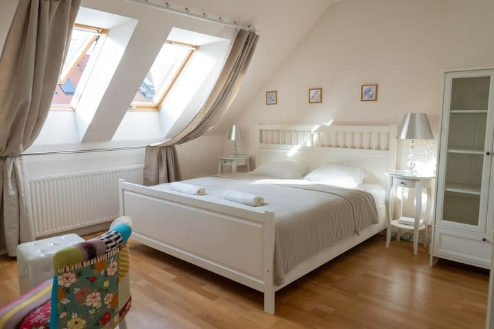 COZY ROOM SUPER CLOSE TO THE CITY CENTER [B]