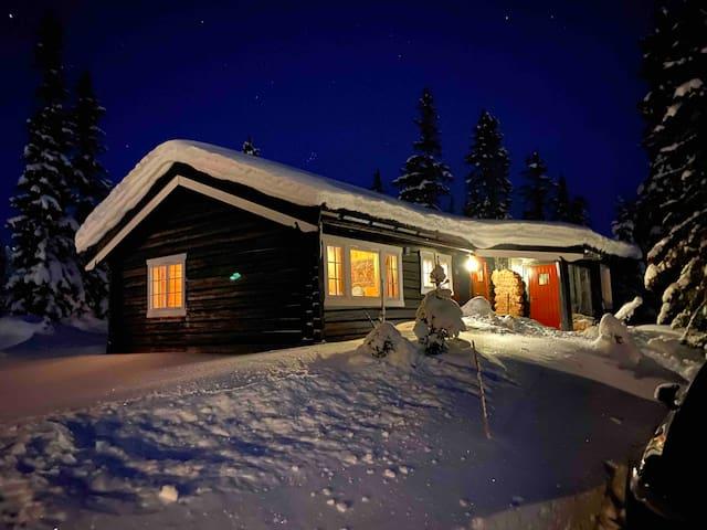 Fin hytte Hafjelltoppen, ski in/out