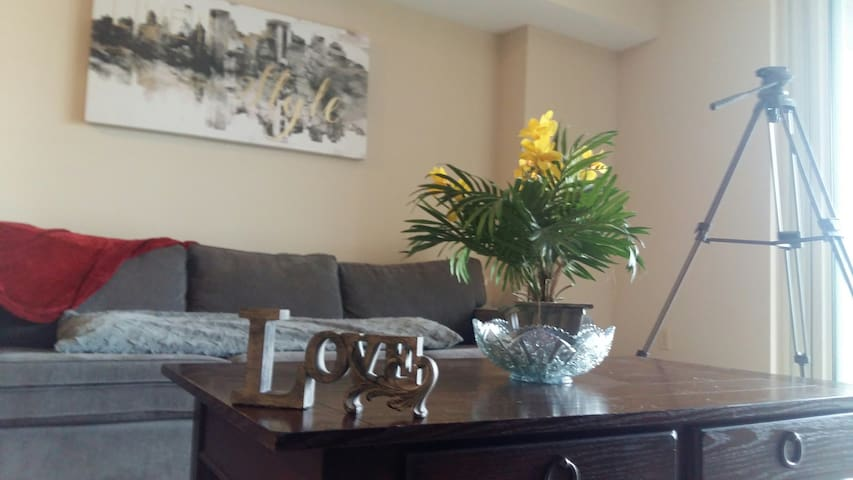 Affordable Apt in Pentagon City, Walk to Metro