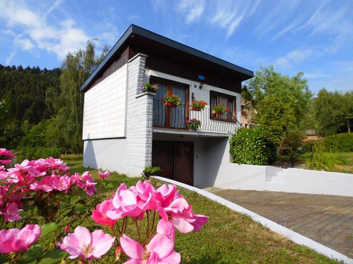 Gîte en Alsace au pied des Vosges près des 2 Lacs
