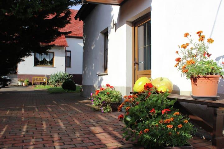Quaint Holiday Home in Schenkendöbern on a farm