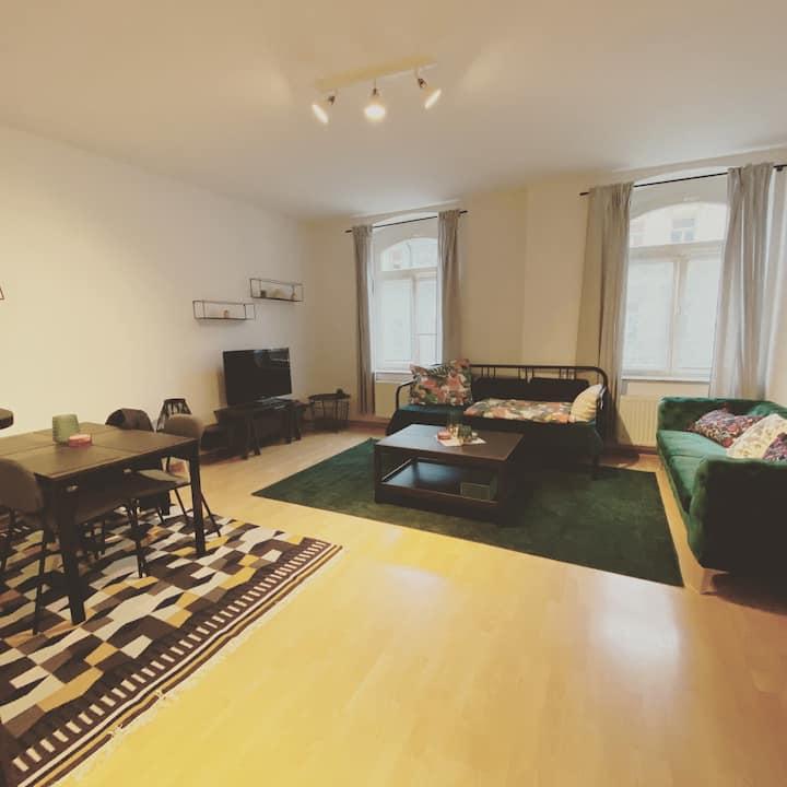 tolles Balkon-Apartment, Zwickau Innenstadt