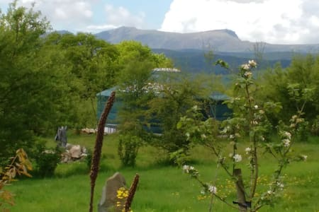 Annie's beautiful secluded heated mongolian yurt - Machynlleth