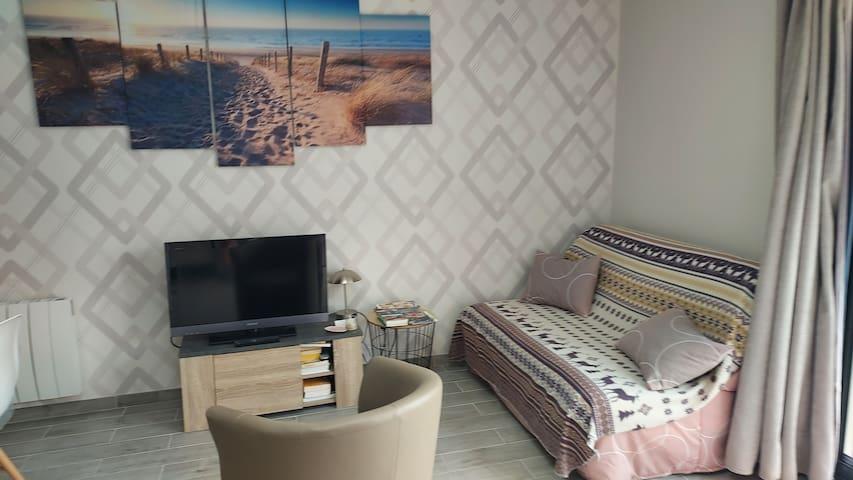 Coin salon avec télévision et lit d'appoint 2 personnes.