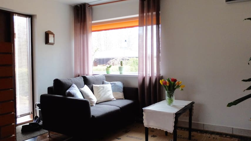 Quiet house for family with kids - Tallinn - Dům