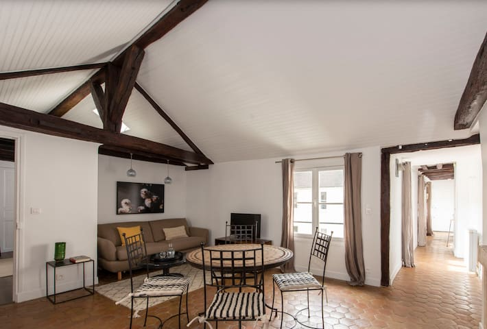 Luxury, large one bedroom in heart of the Marais