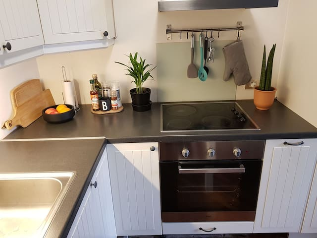 Nice 1 bedroom apartment close to center