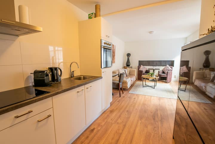 Luxurious appartment in heart of Delft with terras