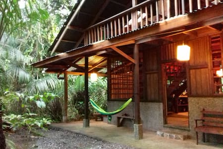Beachfront-rainforest paradise retreat, Drake bay.