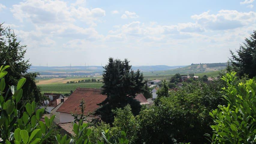 Traumhafte Wohnung mit Gartenterrasse & Fernblick - Vendersheim - Apartment