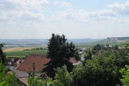 Traumhafte Wohnung mit Gartenterrasse & Fernblick - Vendersheim