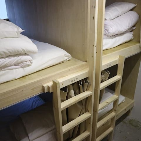 idocoro Bed in 6-Bed Male Dormitory Room