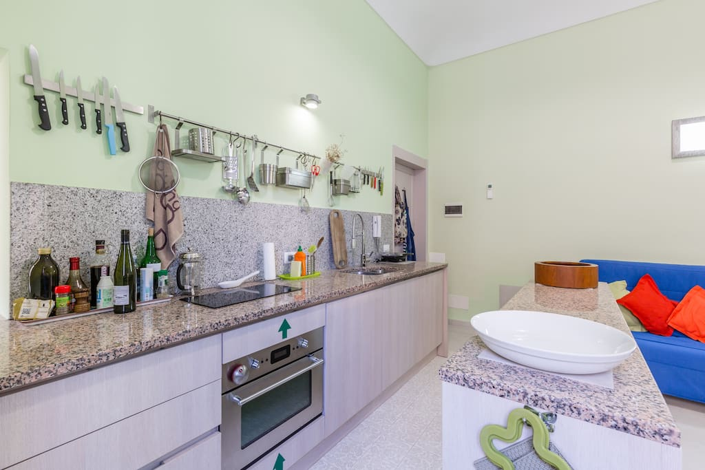 Well equipped kitchen with dishwasher, oven, induction cooker.