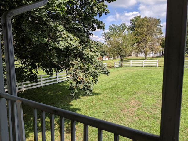 Views from the private balcony include farm land, farm animals and the pool.